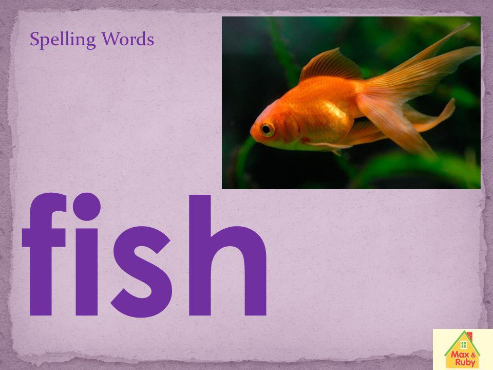 Spelling Words shell