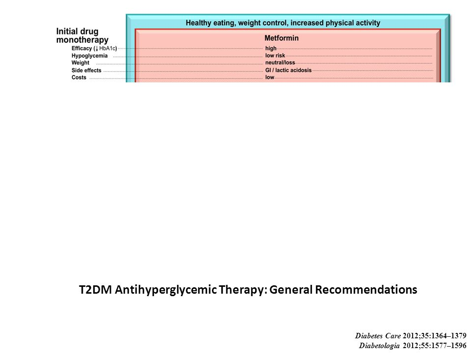 T2DM Antihyperglycemic Therapy: General Recommendations Diabetes Care 2012;35:1364–1379 Diabetologia 2012;55:1577–1596