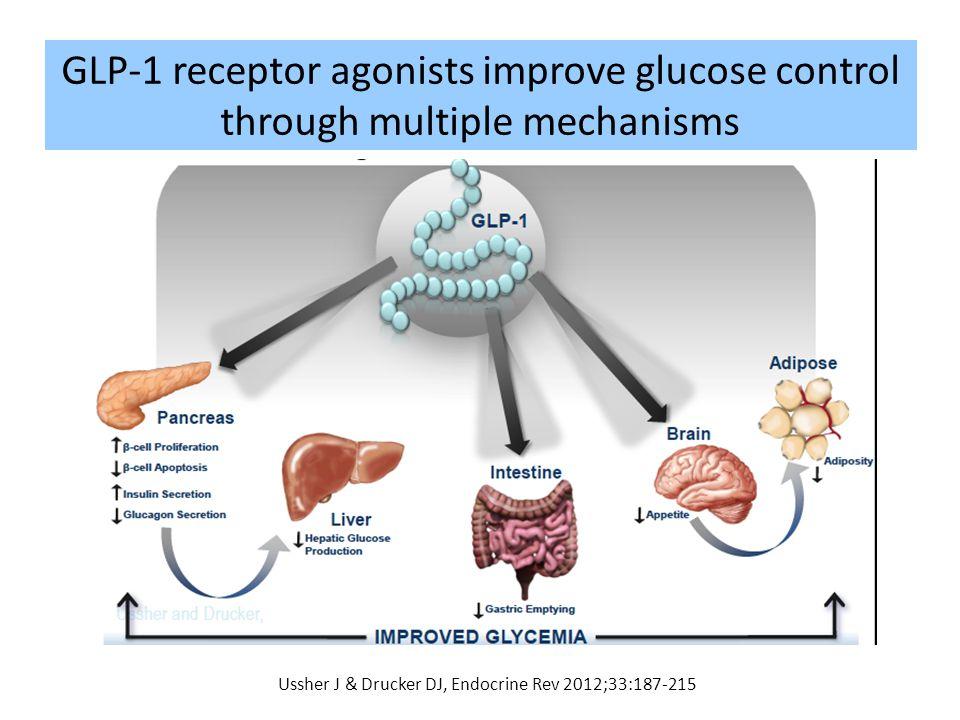 GLP-1 receptor agonists improve glucose control through multiple mechanisms Ussher J & Drucker DJ, Endocrine Rev 2012;33:187-215