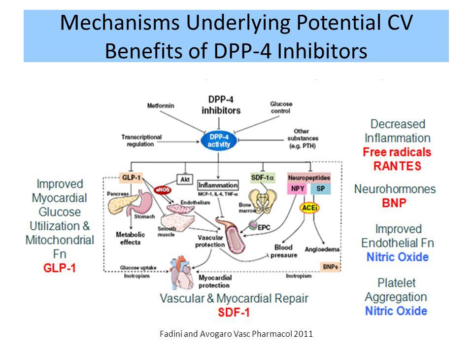 Mechanisms Underlying Potential CV Benefits of DPP-4 Inhibitors Fadini and Avogaro Vasc Pharmacol 2011