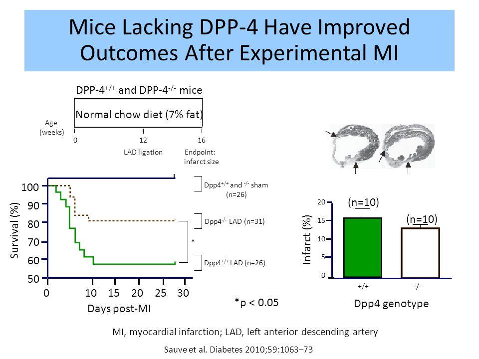 Mice Lacking DPP-4 Have Improved Outcomes After Experimental MI Sauve et al. Diabetes 2010;59:1063–73 * 01015202530 Days post-MI 60 100 90 80 70 Survi