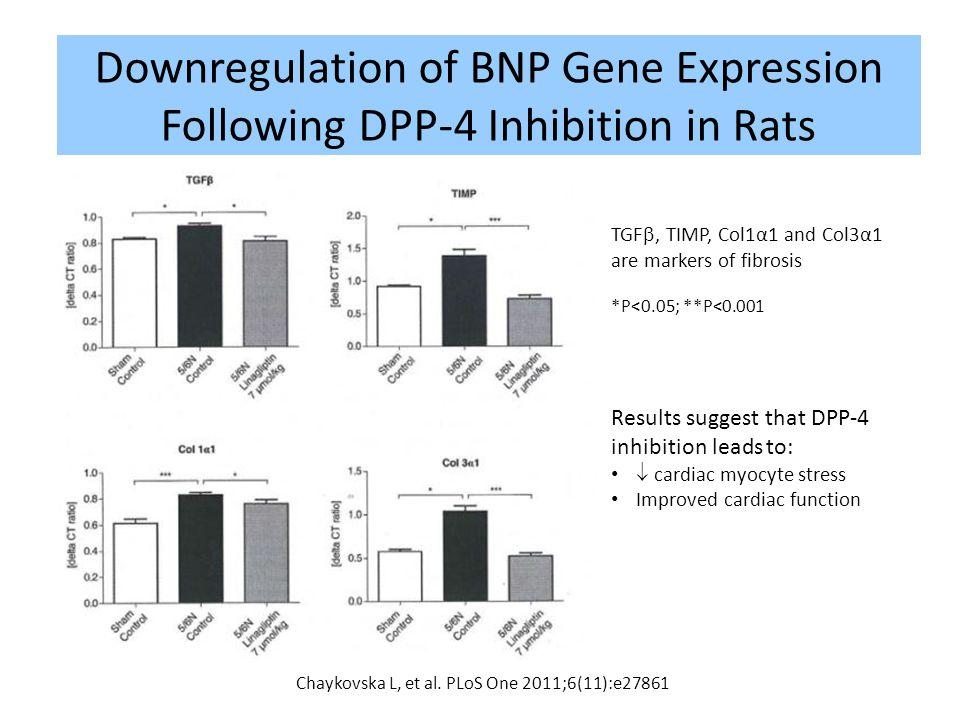 Downregulation of BNP Gene Expression Following DPP-4 Inhibition in Rats 50 Chaykovska L, et al. PLoS One 2011;6(11):e27861 Results suggest that DPP-4