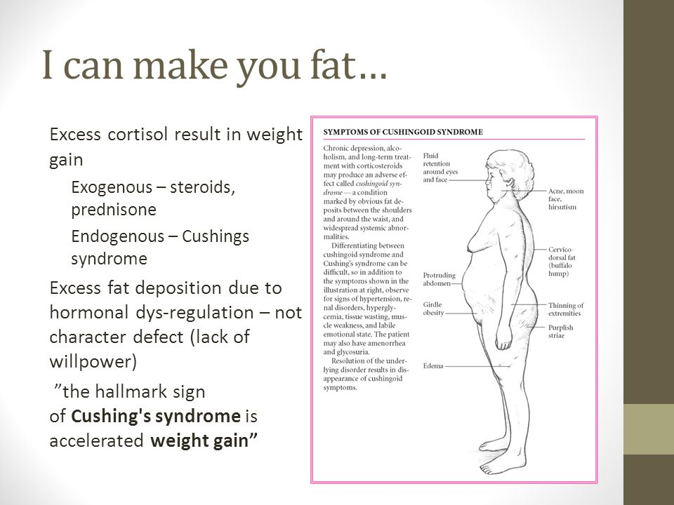 I can make you fat… Excess cortisol result in weight gain Exogenous – steroids, prednisone Endogenous – Cushings syndrome Excess fat deposition due to