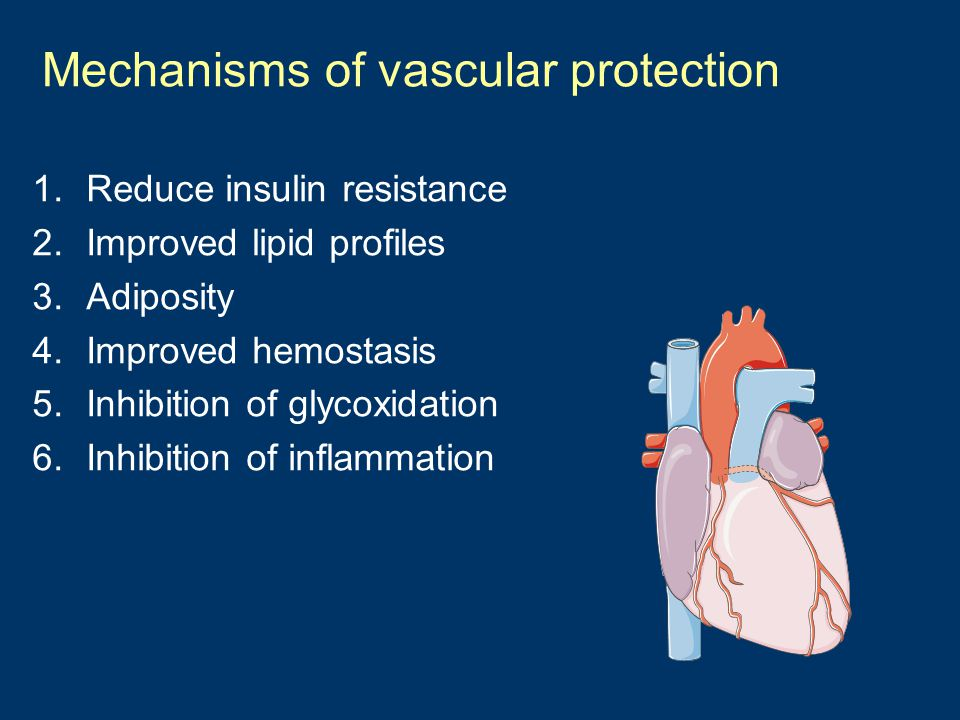 Mechanisms of vascular protection 1.Reduce insulin resistance 2.Improved lipid profiles 3.Adiposity 4.Improved hemostasis 5.Inhibition of glycoxidatio