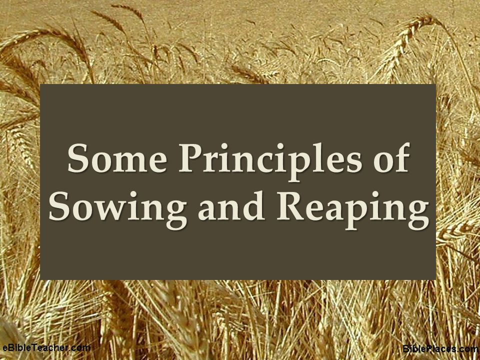 { Some Principles of Sowing and Reaping