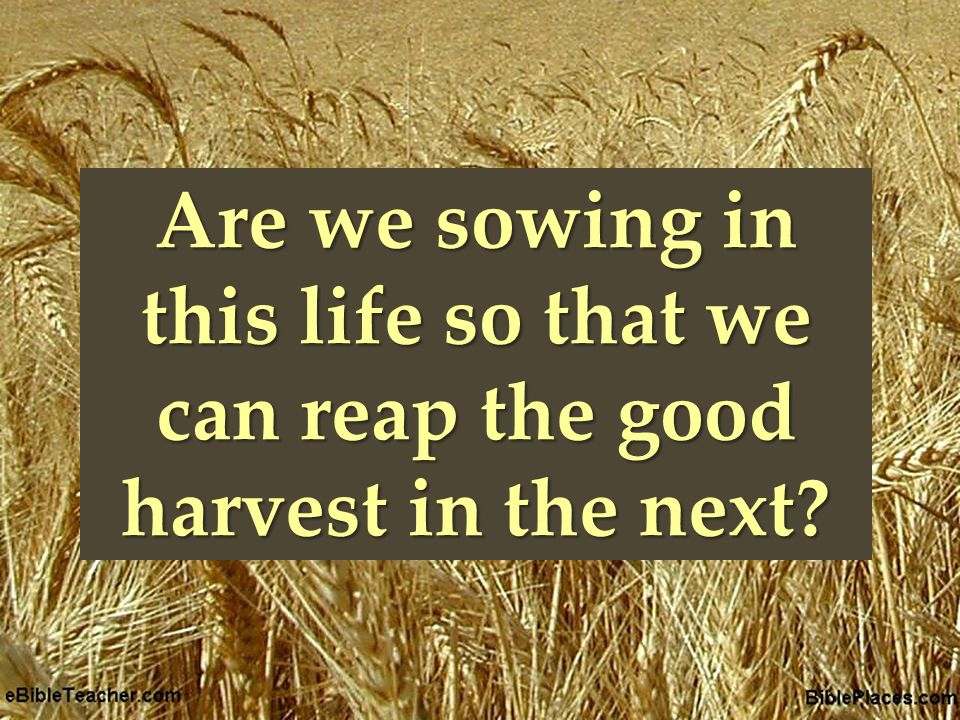 { Are we sowing in this life so that we can reap the good harvest in the next