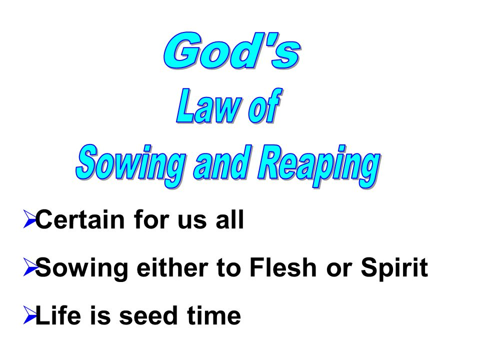  Certain for us all  Sowing either to Flesh or Spirit  Life is seed time