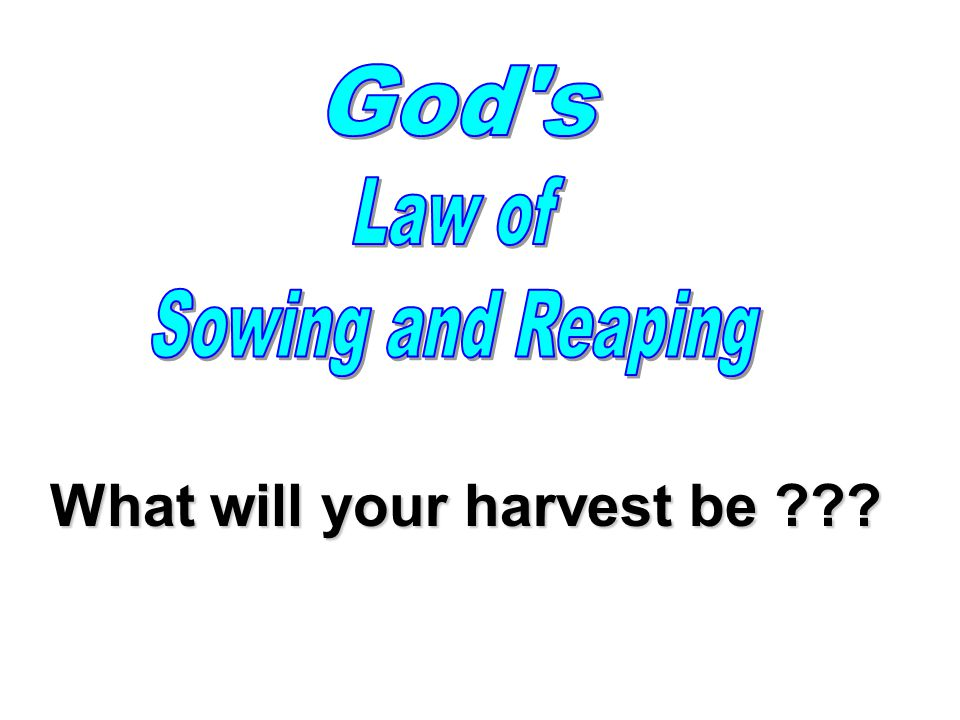 What will your harvest be ???