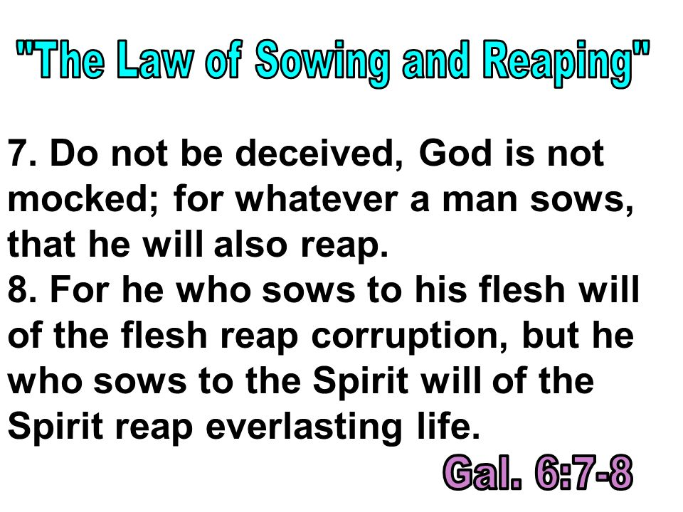 7. Do not be deceived, God is not mocked; for whatever a man sows, that he will also reap.