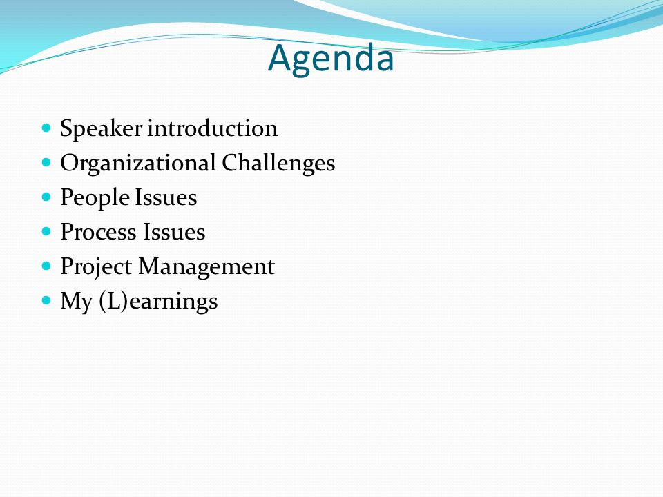 Agenda Speaker introduction Organizational Challenges People Issues Process Issues Project Management My (L)earnings