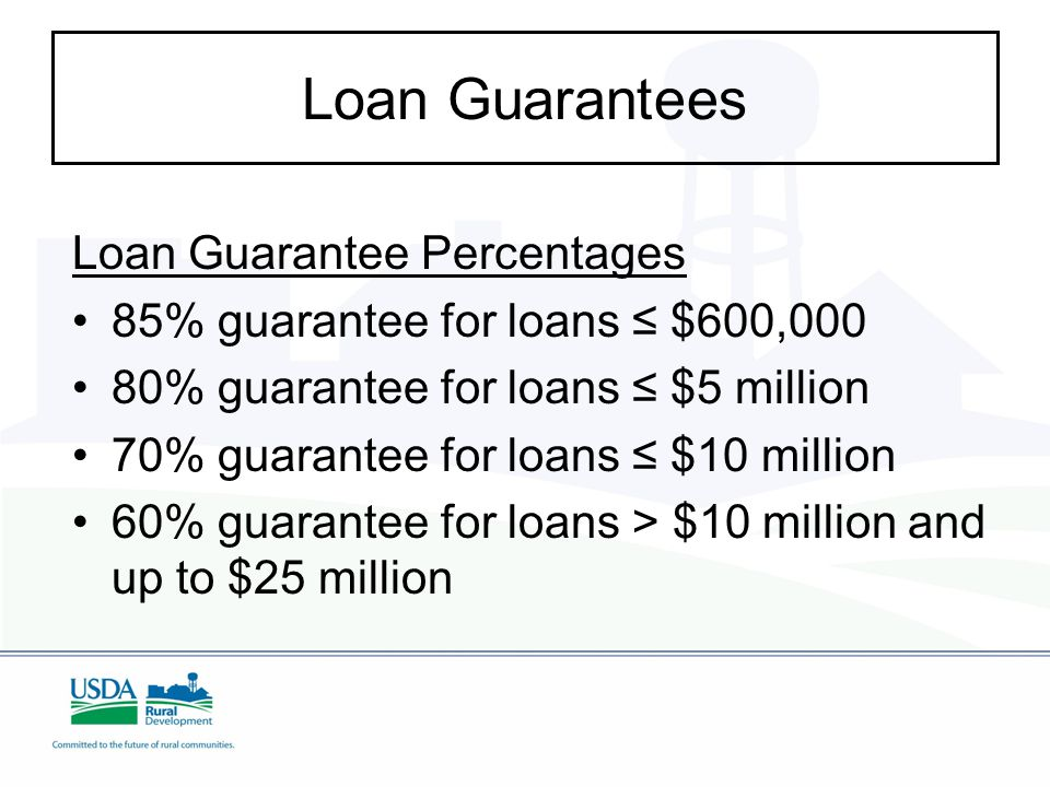 Loan Guarantees Loan Guarantee Percentages 85% guarantee for loans ≤ $600,000 80% guarantee for loans ≤ $5 million 70% guarantee for loans ≤ $10 million 60% guarantee for loans > $10 million and up to $25 million