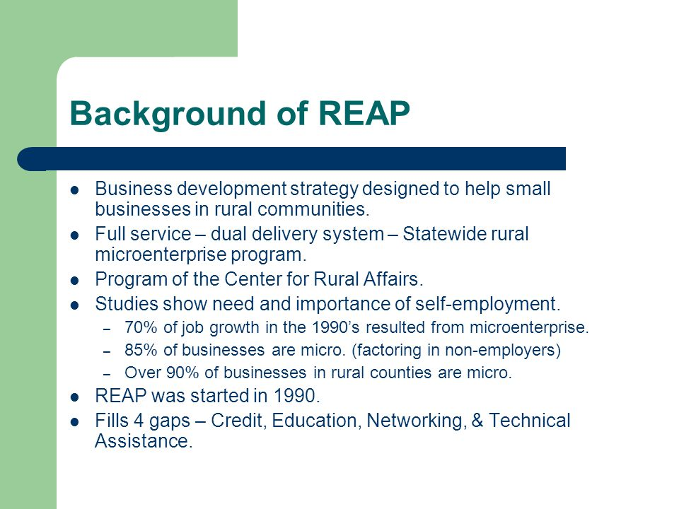 Background of REAP Business development strategy designed to help small businesses in rural communities.