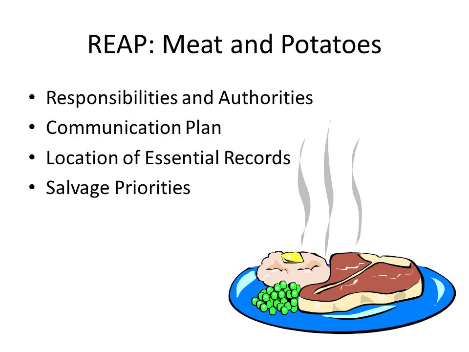 REAP: Meat and Potatoes Responsibilities and Authorities Communication Plan Location of Essential Records Salvage Priorities