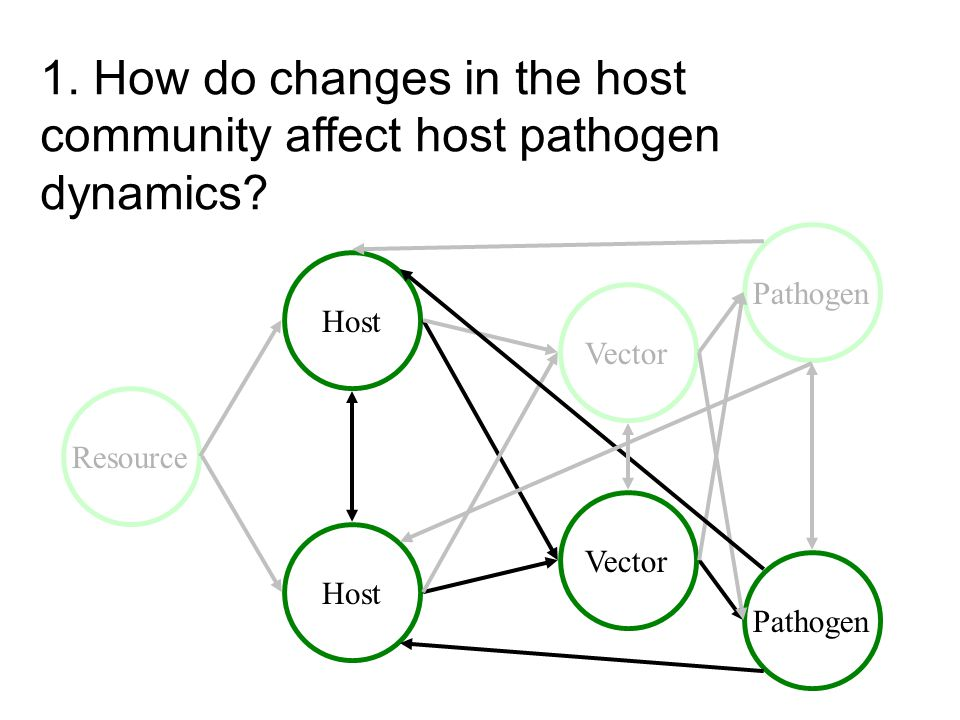 1. How do changes in the host community affect host pathogen dynamics.
