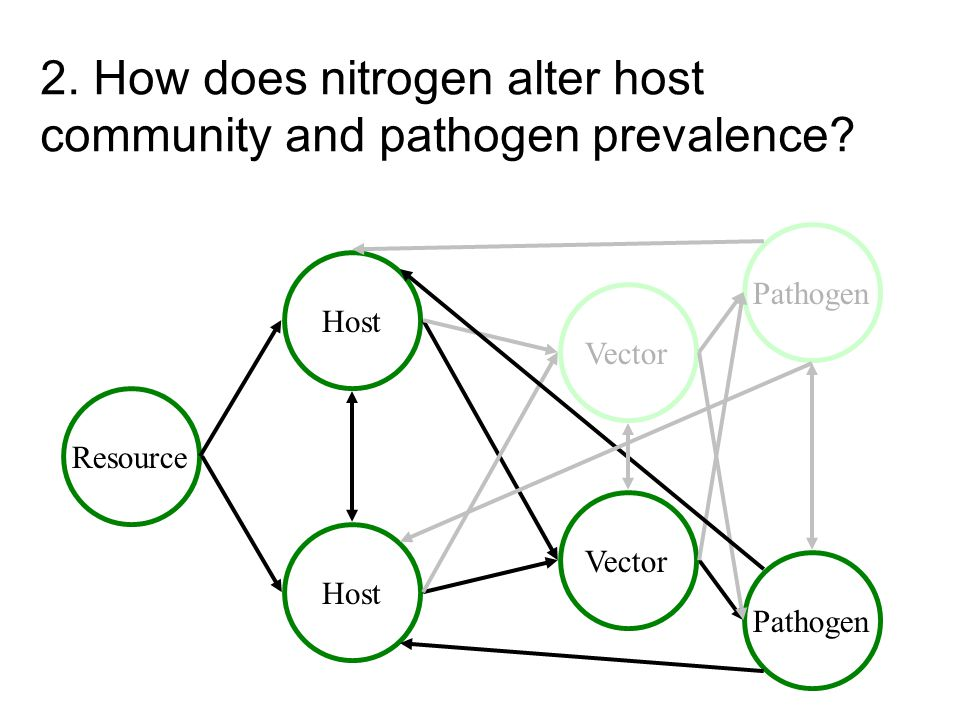 2. How does nitrogen alter host community and pathogen prevalence? Resource Host Pathogen Vector