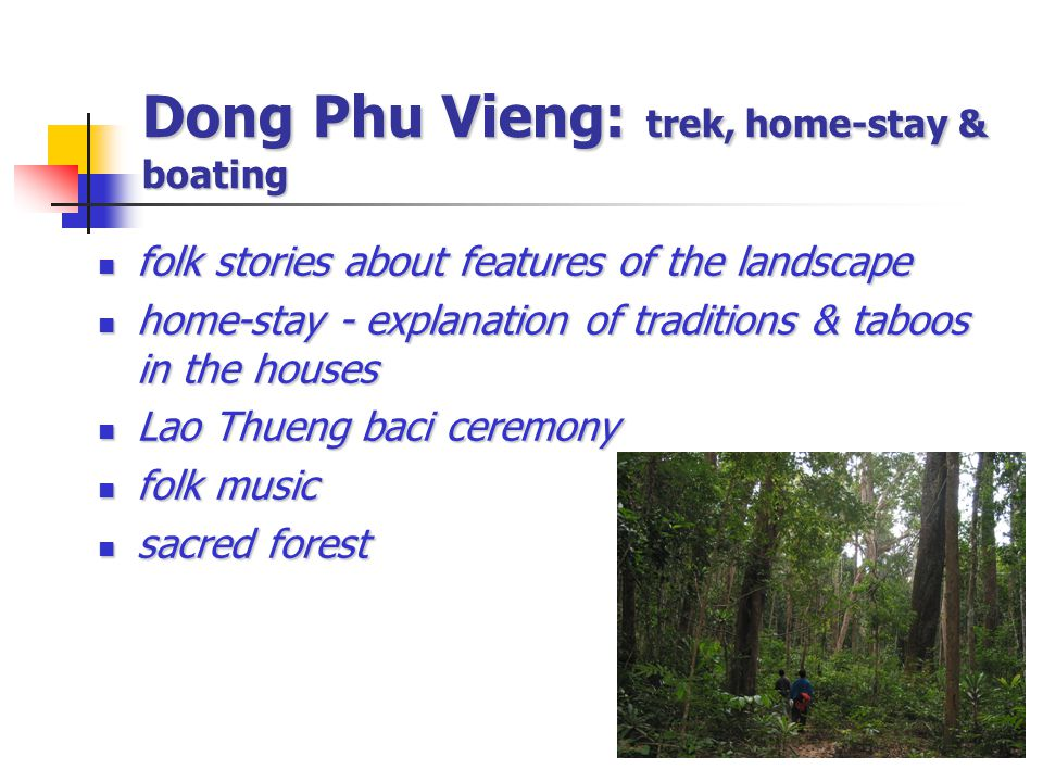 Dong Phu Vieng: trek, home-stay & boating folk stories about features of the landscape folk stories about features of the landscape home-stay - explanation of traditions & taboos in the houses home-stay - explanation of traditions & taboos in the houses Lao Thueng baci ceremony Lao Thueng baci ceremony folk music folk music sacred forest sacred forest