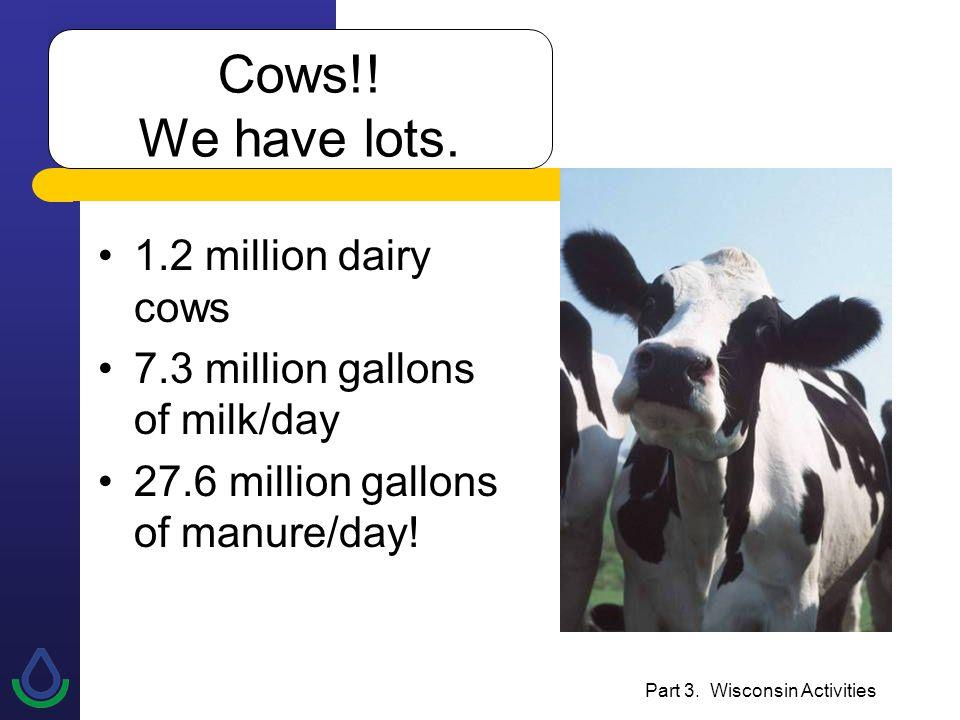 Part 3. Wisconsin Activities Cows!. We have lots.