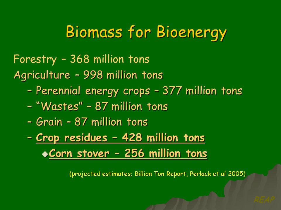 Forestry – 368 million tons Agriculture – 998 million tons –Perennial energy crops – 377 million tons – Wastes – 87 million tons –Grain – 87 million tons –Crop residues – 428 million tons  Corn stover – 256 million tons (projected estimates; Billion Ton Report, Perlack et al 2005) Biomass for Bioenergy REAP