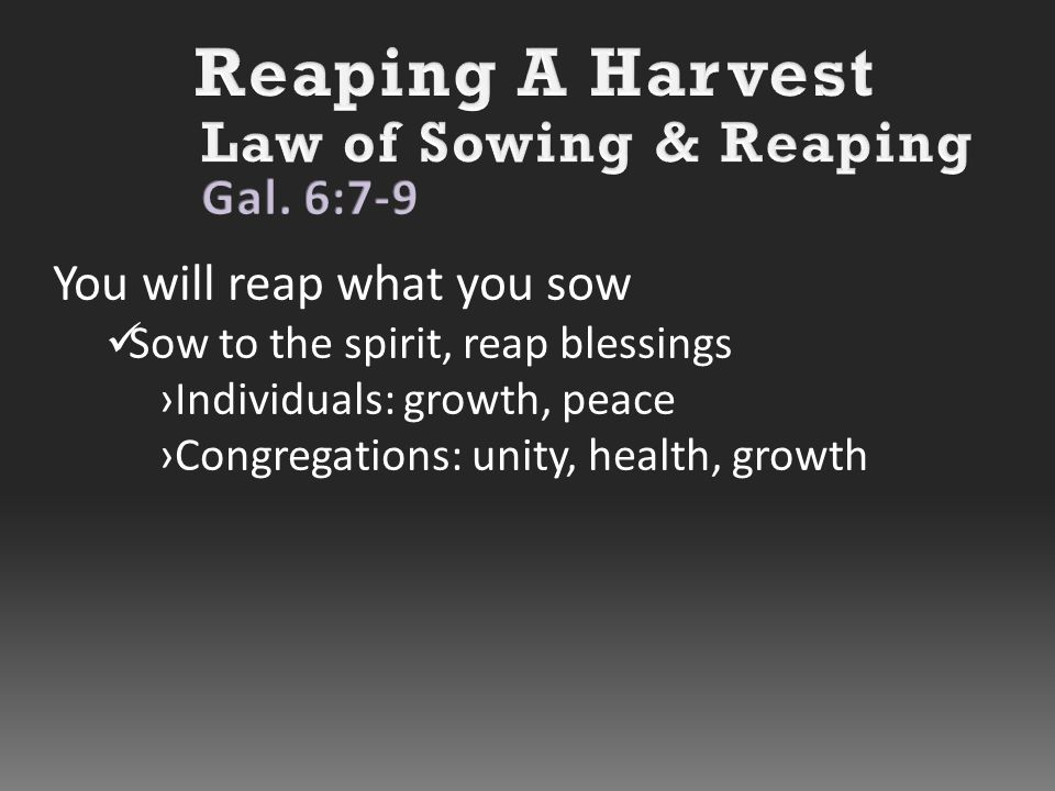 You will reap what you sow Sow to the spirit, reap blessings ›Individuals: growth, peace ›Congregations: unity, health, growth