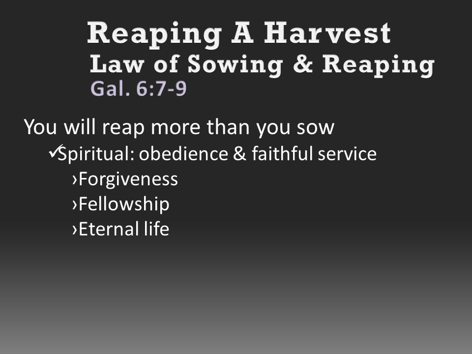 You will reap more than you sow Spiritual: obedience & faithful service ›Forgiveness ›Fellowship ›Eternal life