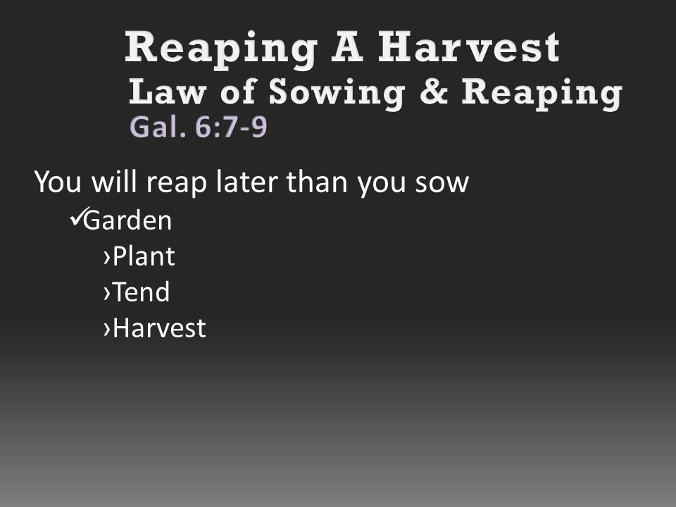 You will reap later than you sow Garden ›Plant ›Tend ›Harvest