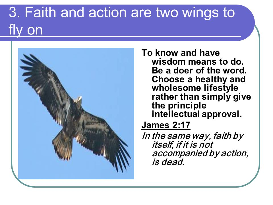 3. Faith and action are two wings to fly on To know and have wisdom means to do.