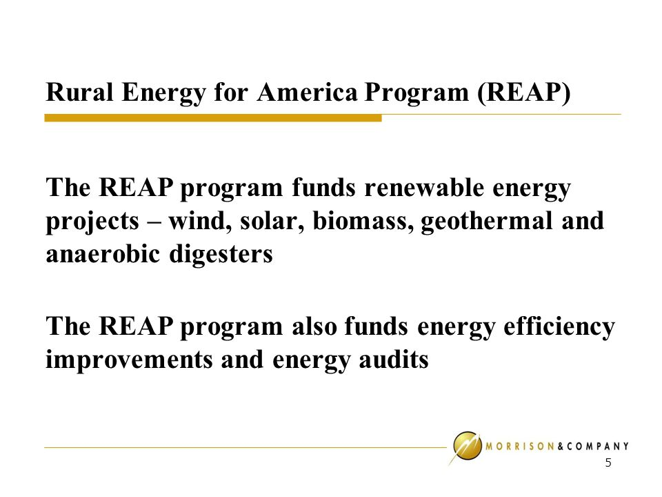 Rural Energy for America Program (REAP) The REAP program funds renewable energy projects – wind, solar, biomass, geothermal and anaerobic digesters The REAP program also funds energy efficiency improvements and energy audits 5