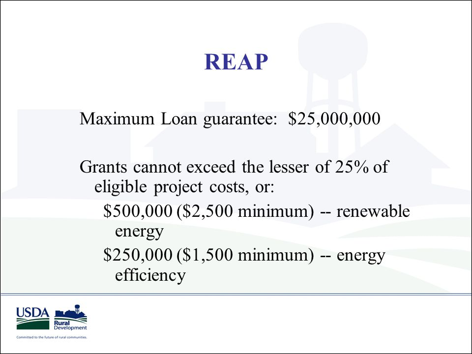 REAP Maximum Loan guarantee: $25,000,000 Grants cannot exceed the lesser of 25% of eligible project costs, or: $500,000 ($2,500 minimum) -- renewable
