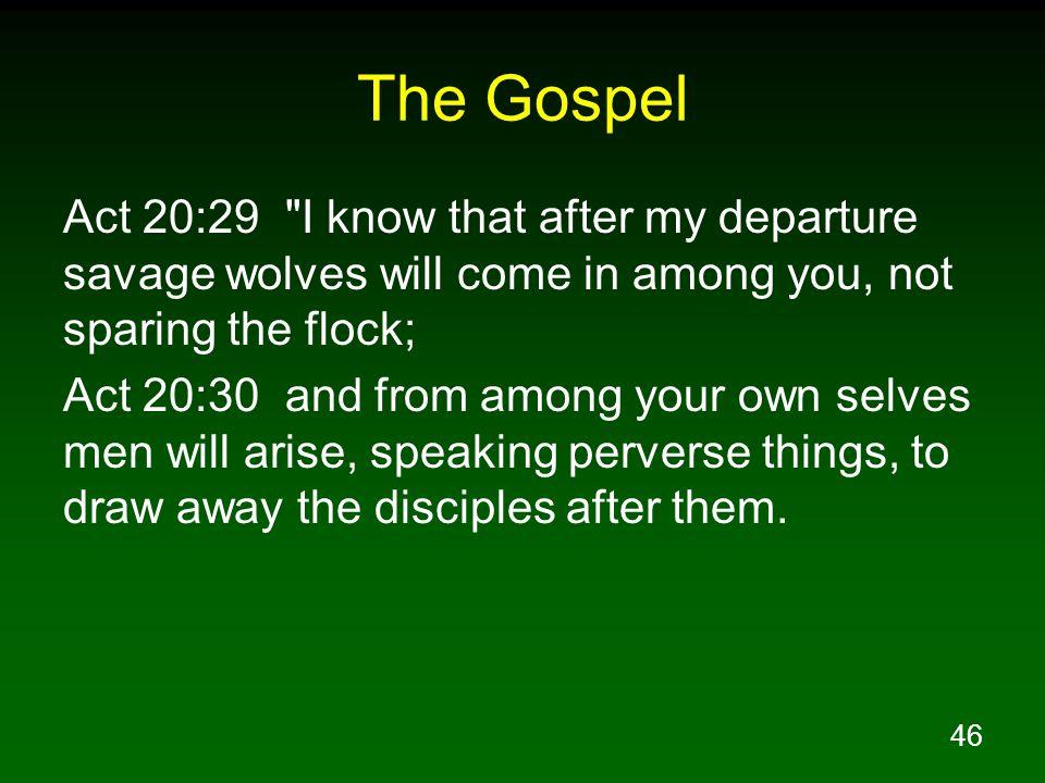 46 The Gospel Act 20:29