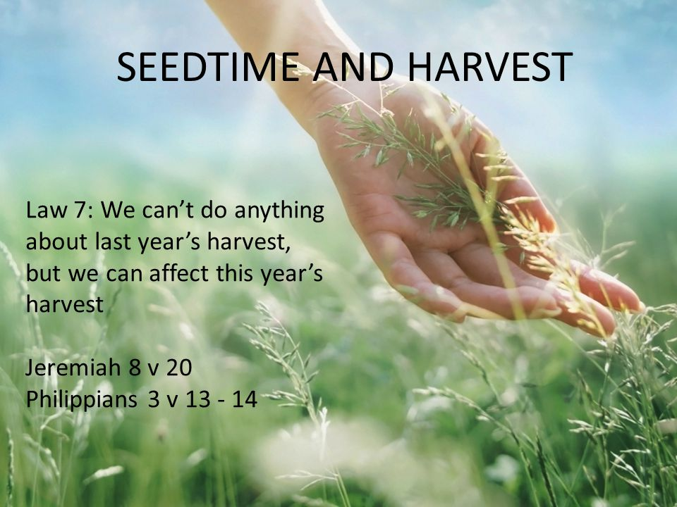 Law 7: We can't do anything about last year's harvest, but we can affect this year's harvest Jeremiah 8 v 20 Philippians 3 v 13 - 14 SEEDTIME AND HARV