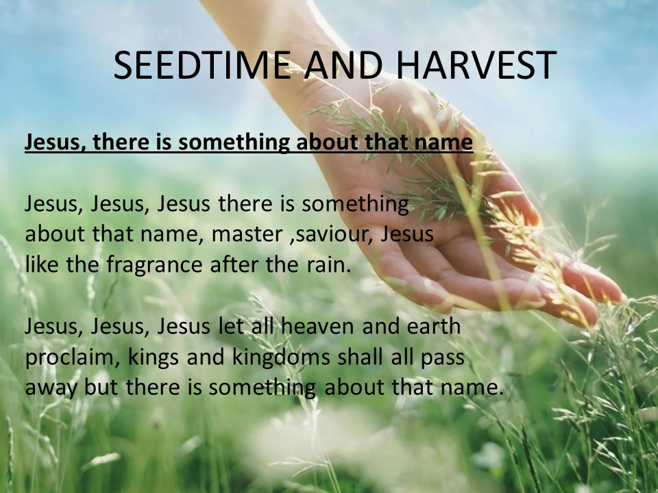 Law 6: We reap the full harvest of God only if we persevere Matthew 13 v 24 - 30 Mark 4 v 14 – 20 Galatians 6 v 9 SEEDTIME AND HARVEST