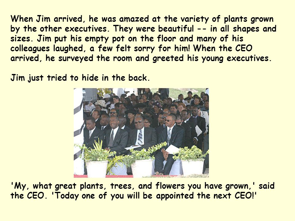 When Jim arrived, he was amazed at the variety of plants grown by the other executives.
