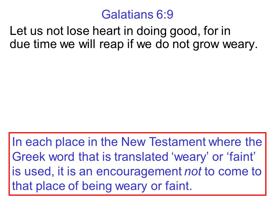 Galatians 6:9 Let us not lose heart in doing good, for in due time we will reap if we do not grow weary.