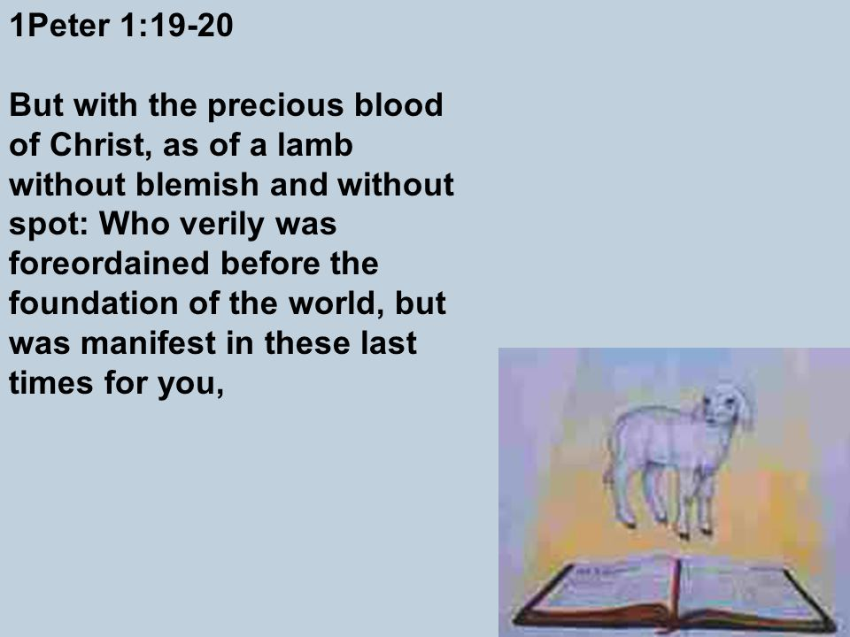 1Peter 1:19-20 But with the precious blood of Christ, as of a lamb without blemish and without spot: Who verily was foreordained before the foundation of the world, but was manifest in these last times for you,