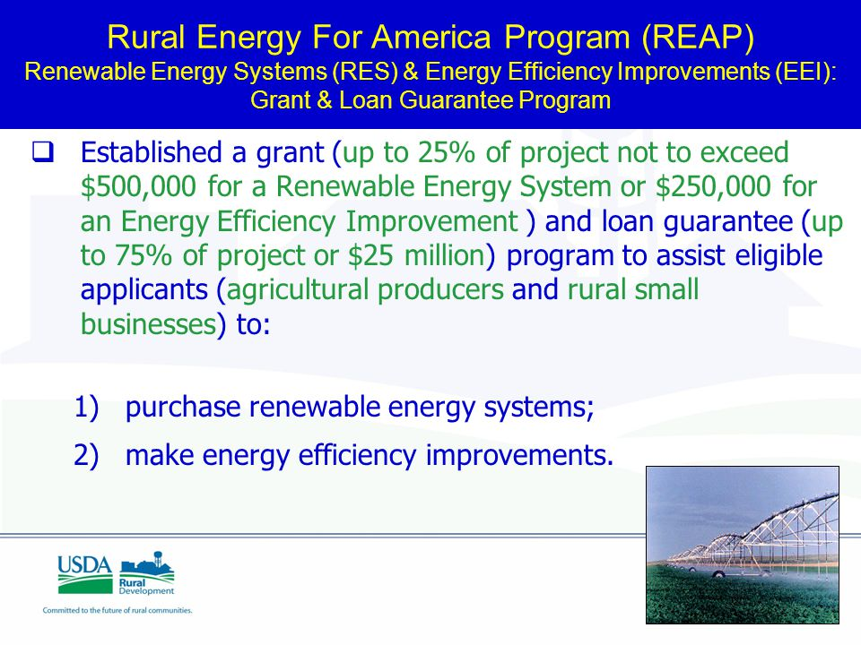 Rural Energy For America Program (REAP) Renewable Energy Systems (RES) & Energy Efficiency Improvements (EEI): Grant & Loan Guarantee Program  Established a grant (up to 25% of project not to exceed $500,000 for a Renewable Energy System or $250,000 for an Energy Efficiency Improvement ) and loan guarantee (up to 75% of project or $25 million) program to assist eligible applicants (agricultural producers and rural small businesses) to: 1) purchase renewable energy systems; 2) make energy efficiency improvements.