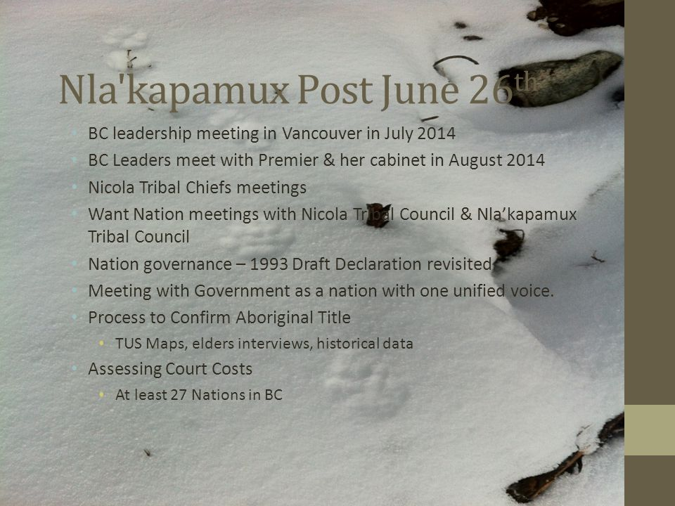 Nla kapamux Post June 26 th BC leadership meeting in Vancouver in July 2014 BC Leaders meet with Premier & her cabinet in August 2014 Nicola Tribal Chiefs meetings Want Nation meetings with Nicola Tribal Council & Nla'kapamux Tribal Council Nation governance – 1993 Draft Declaration revisited.