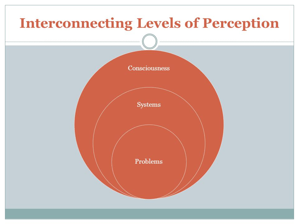 Interconnecting Levels of Perception Consciousness Systems Problems