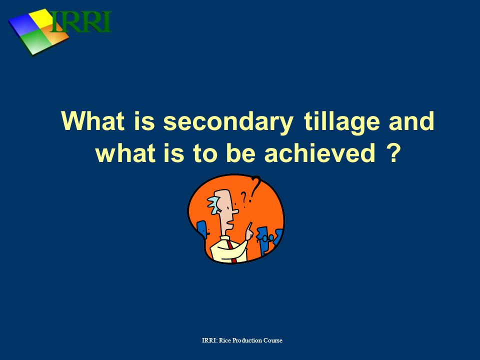 IRRI: Rice Production Course What is secondary tillage and what is to be achieved ?