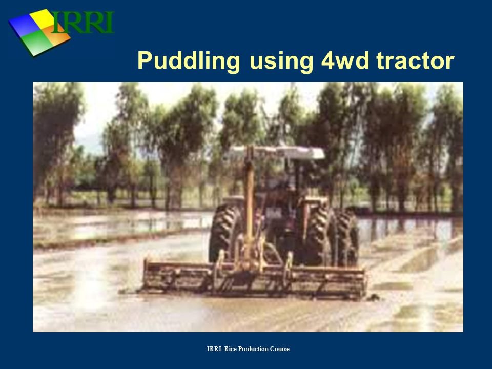 IRRI: Rice Production Course Puddling using 4wd tractor