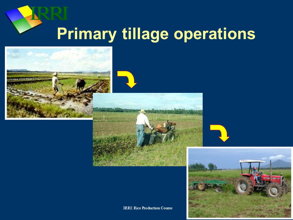 IRRI: Rice Production Course Primary tillage operations