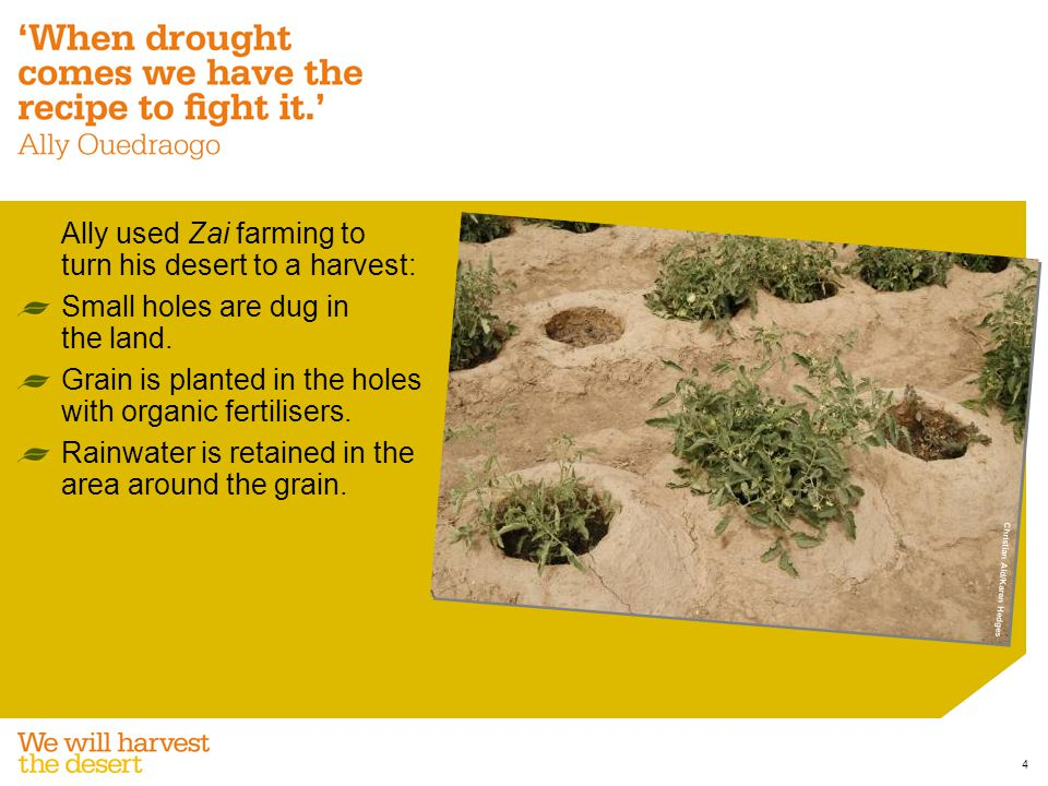 Ally also used rock belts to irrigate his land: Rock belts follow the contours of the land.