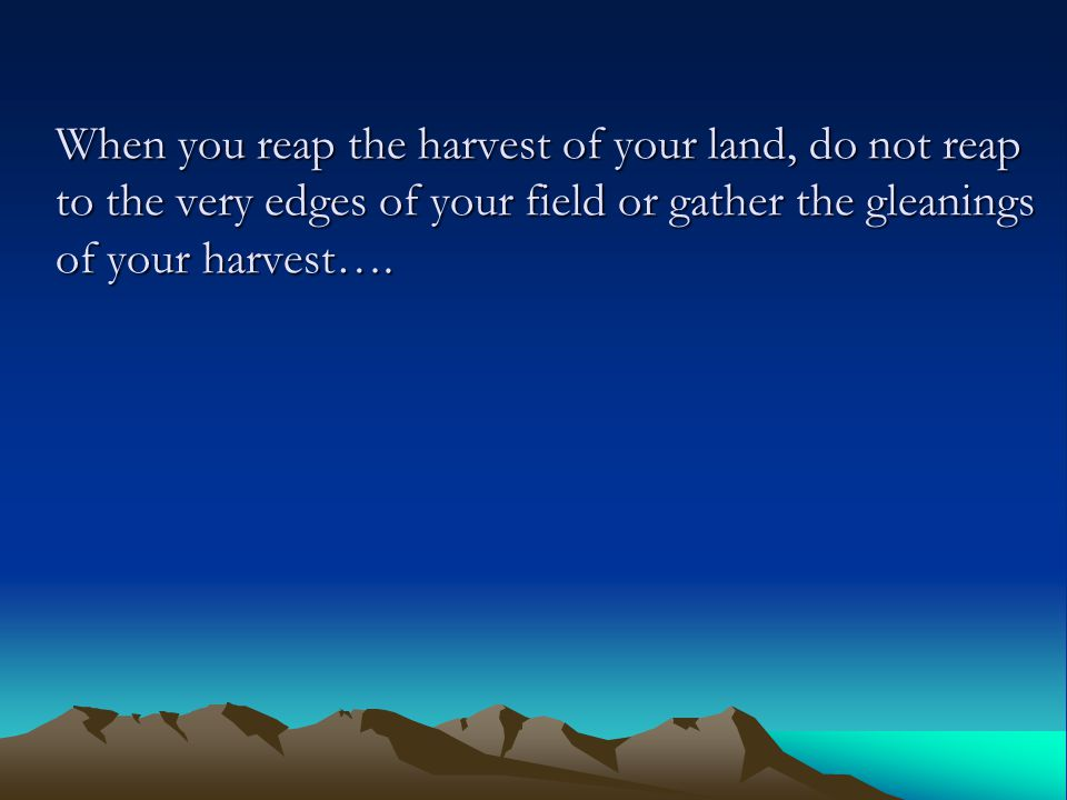 When you reap the harvest of your land, do not reap to the very edges of your field or gather the gleanings of your harvest….