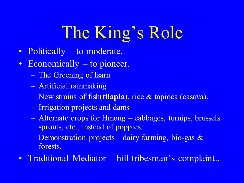 The King's Role Politically – to moderate. Economically – to pioneer.