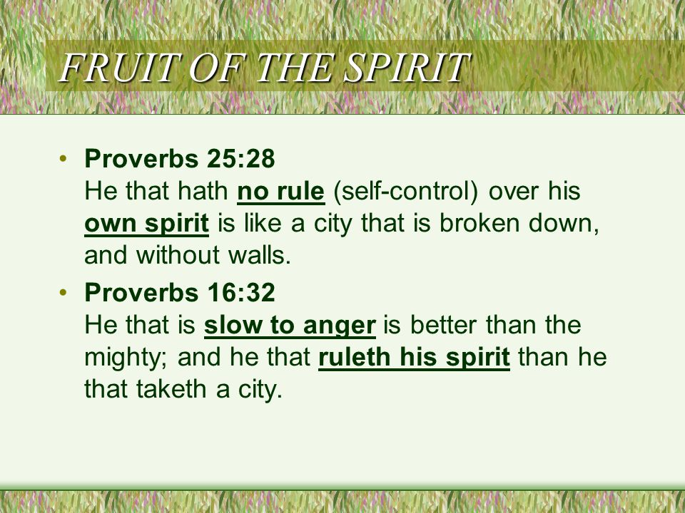 FRUIT OF THE SPIRIT Proverbs 25:28 He that hath no rule (self-control) over his own spirit is like a city that is broken down, and without walls.