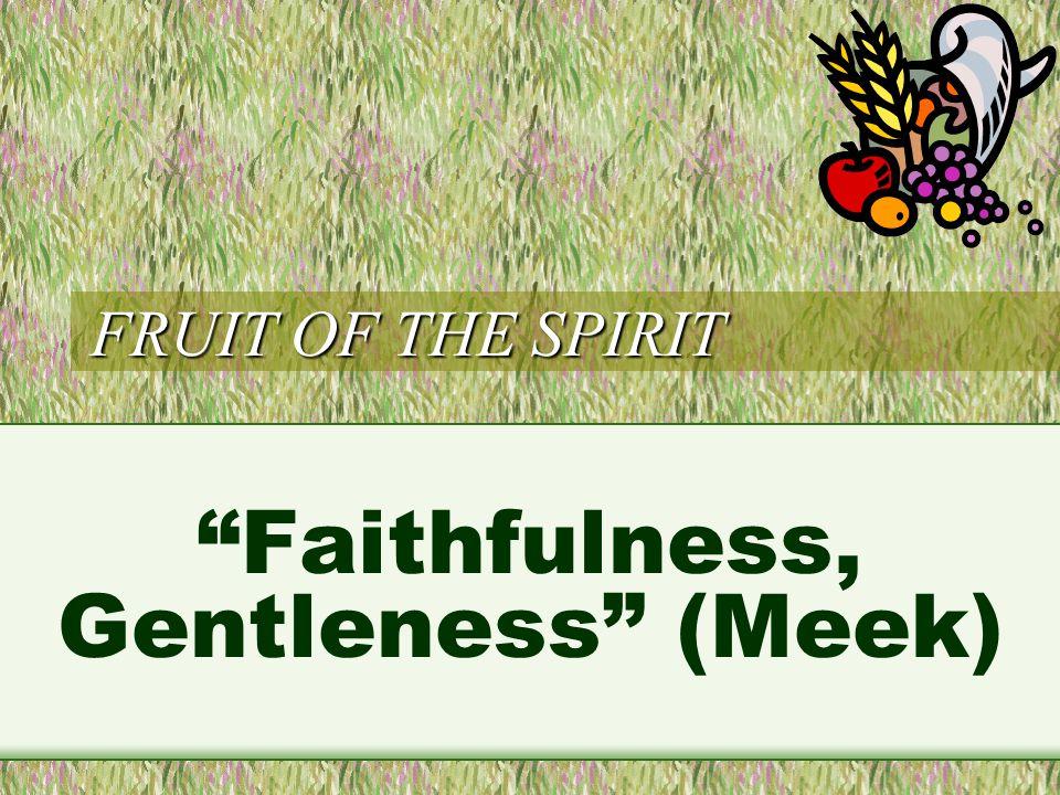 FRUIT OF THE SPIRIT Faithfulness, Gentleness (Meek)