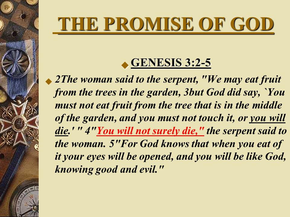 THE PROMISE OF GOD  Num 23:19 God is not a man, that he should lie, nor a son of man, that he should change his mind.