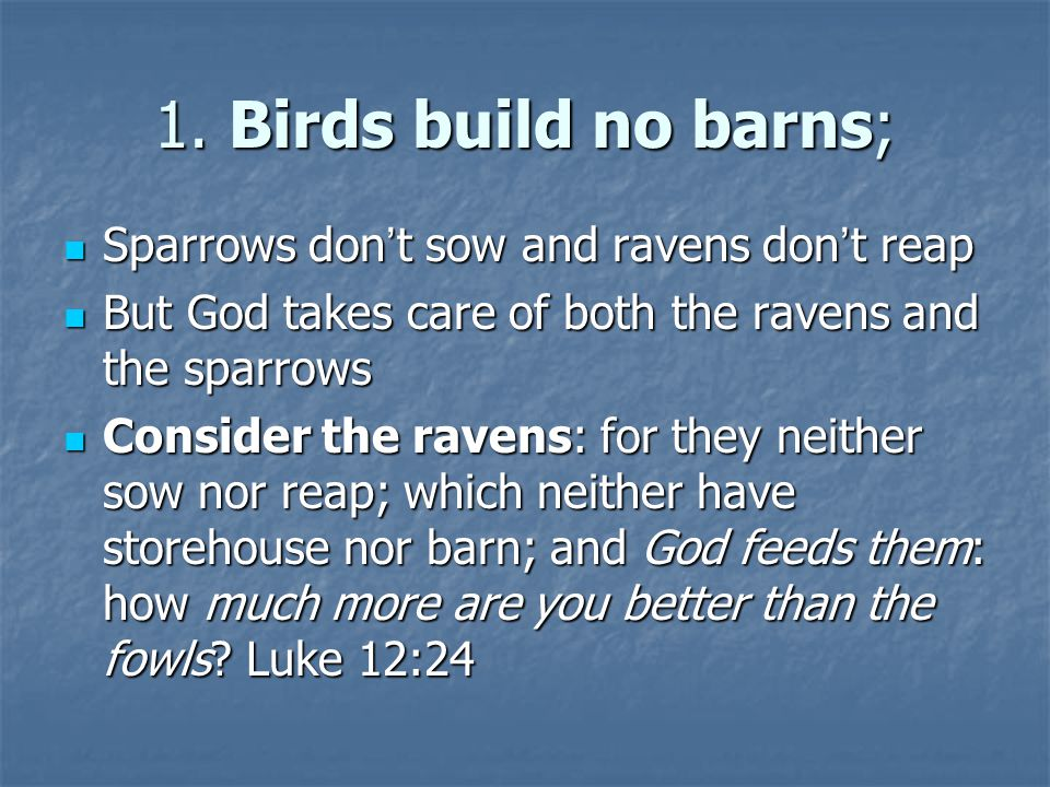 1. Birds build no barns; Sparrows don ' t sow and ravens don ' t reap Sparrows don ' t sow and ravens don ' t reap But God takes care of both the rave