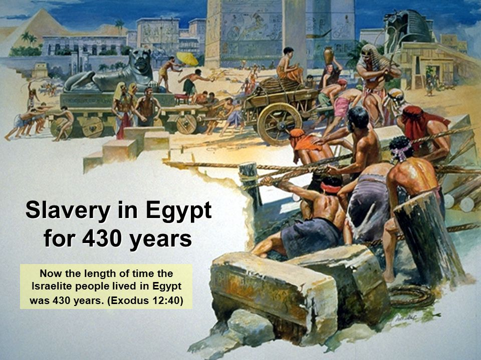 Slavery in Egypt for 430 years Now the length of time the Israelite people lived in Egypt was 430 years. (Exodus 12:40)