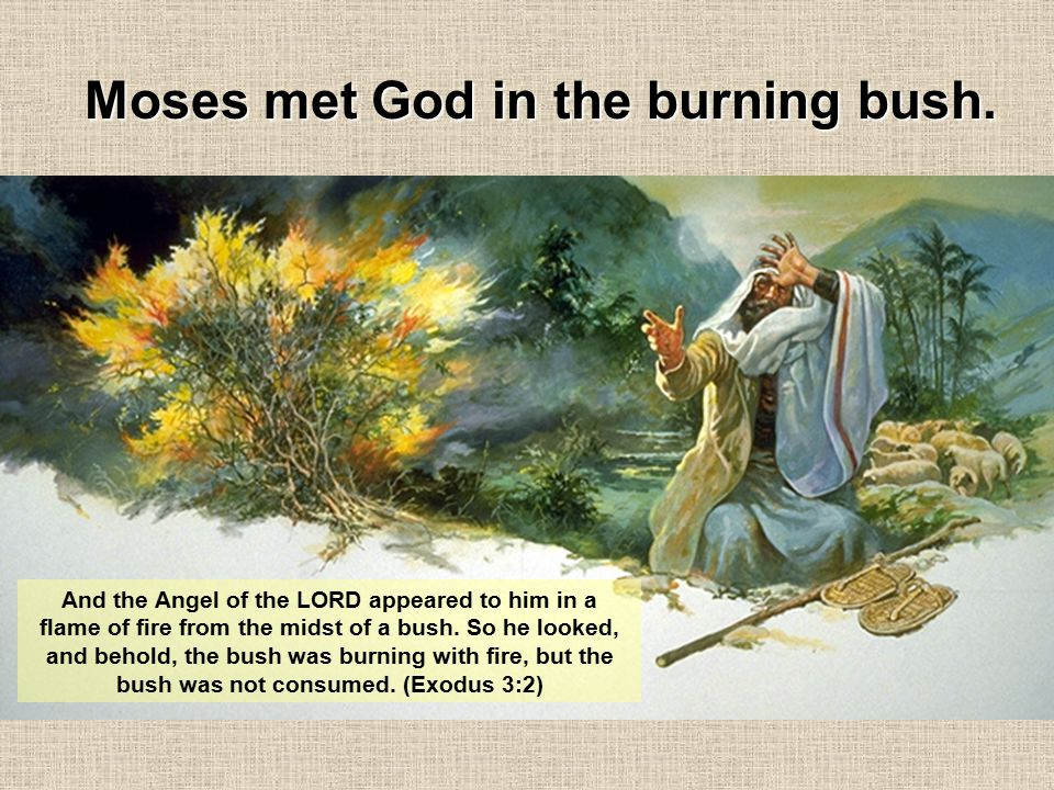 And the Angel of the LORD appeared to him in a flame of fire from the midst of a bush. So he looked, and behold, the bush was burning with fire, but t