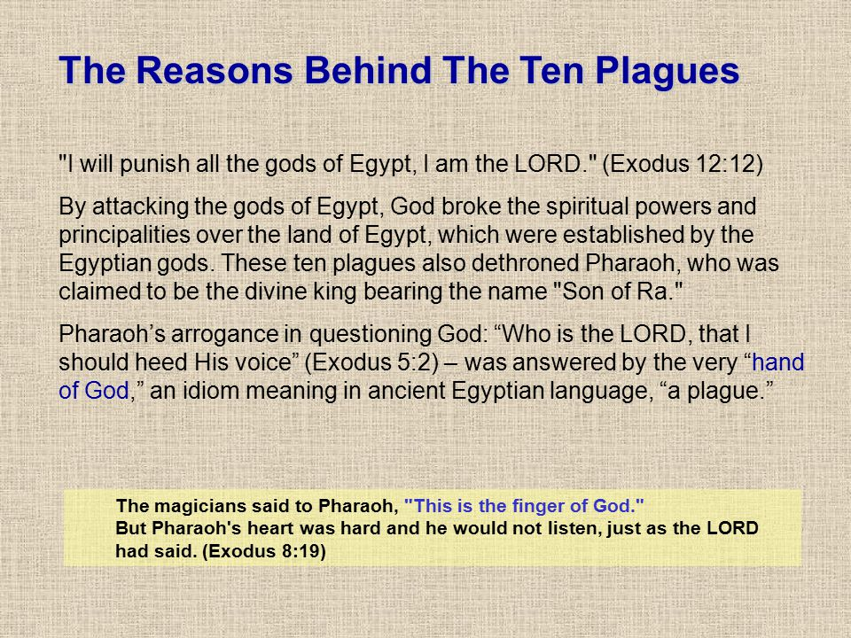 The Reasons Behind The Ten Plagues
